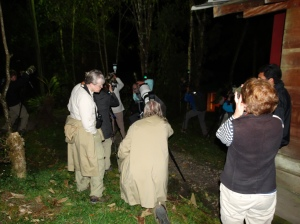 A gathering of photographers and birders for the nightly visit from the black-banded owl at San Isidro