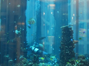 A scuba diver at work in the aquarium in the middle of the Radisson Blu lobby in Berlin.